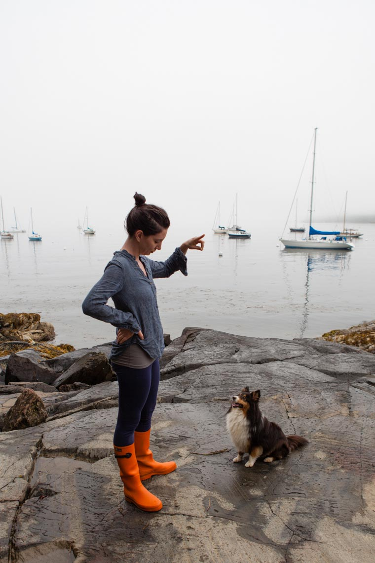 Rockport, Maine shoot - Dog Photographer